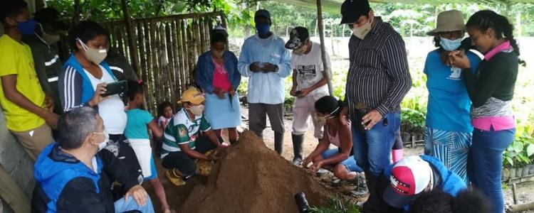 CAPACITACION PARA INCENTIVAR LA PROLIFERACION DE PLANTAS DE CAÑA GUADUAS